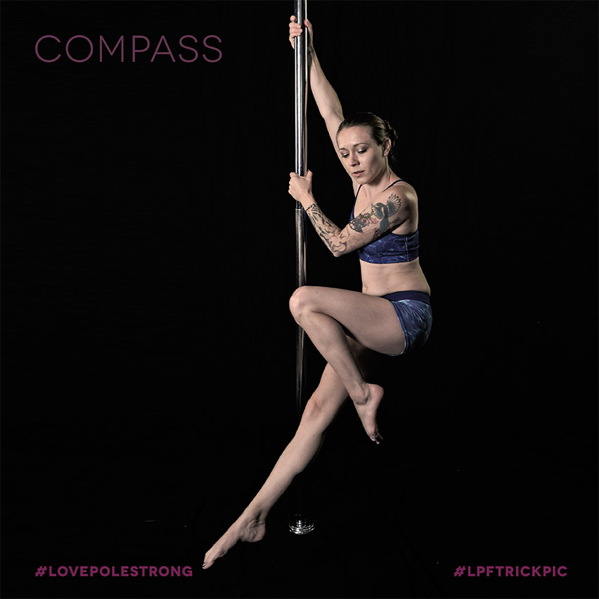 16LPFpoletricks__0018_compass copy