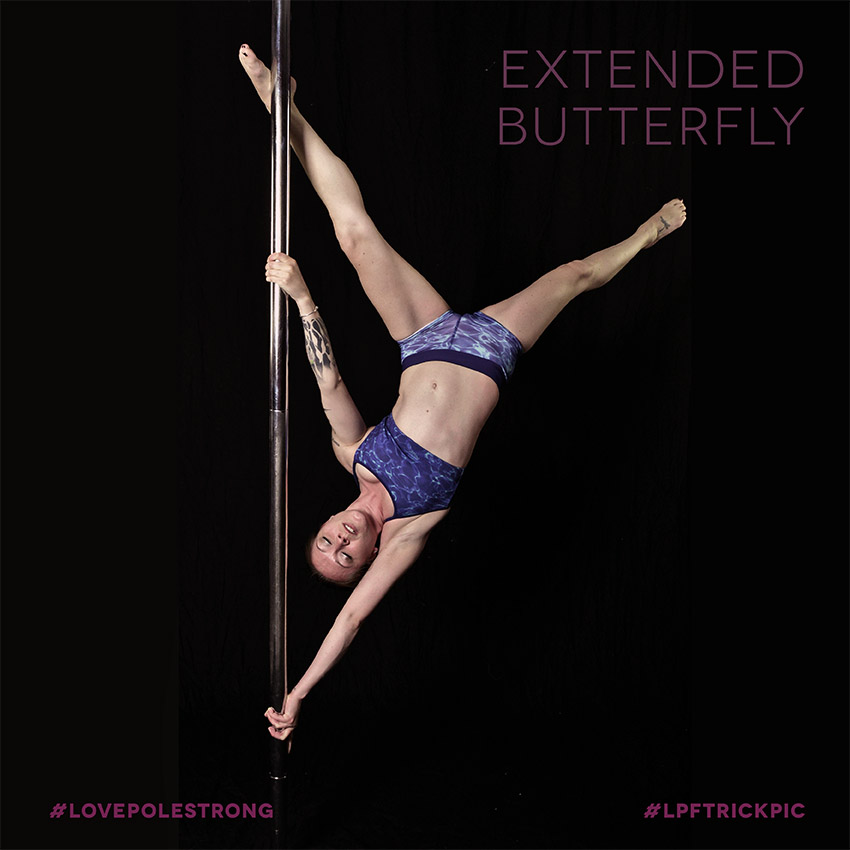 1LPFpoletricks__0029_extended butterfly copy